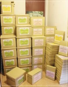 Materi Kursus Grafologi ISHA (box lengkap)r