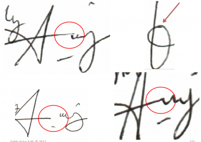 grafonomi slide2